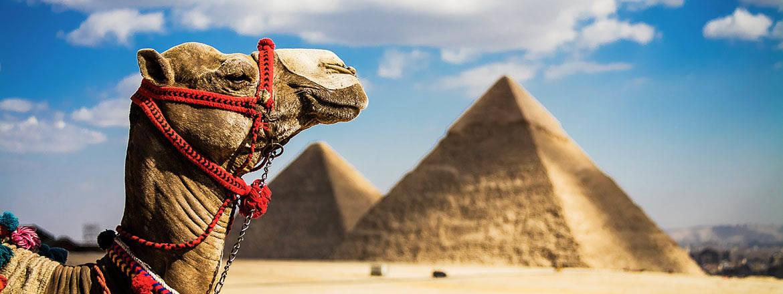 flyg till egypten